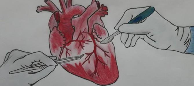 """Otvorený list Denníku N a autorke článku """"Drobček schorým srdcom neplače ani nerozpráva, ublížila mu chyba lekára"""""""